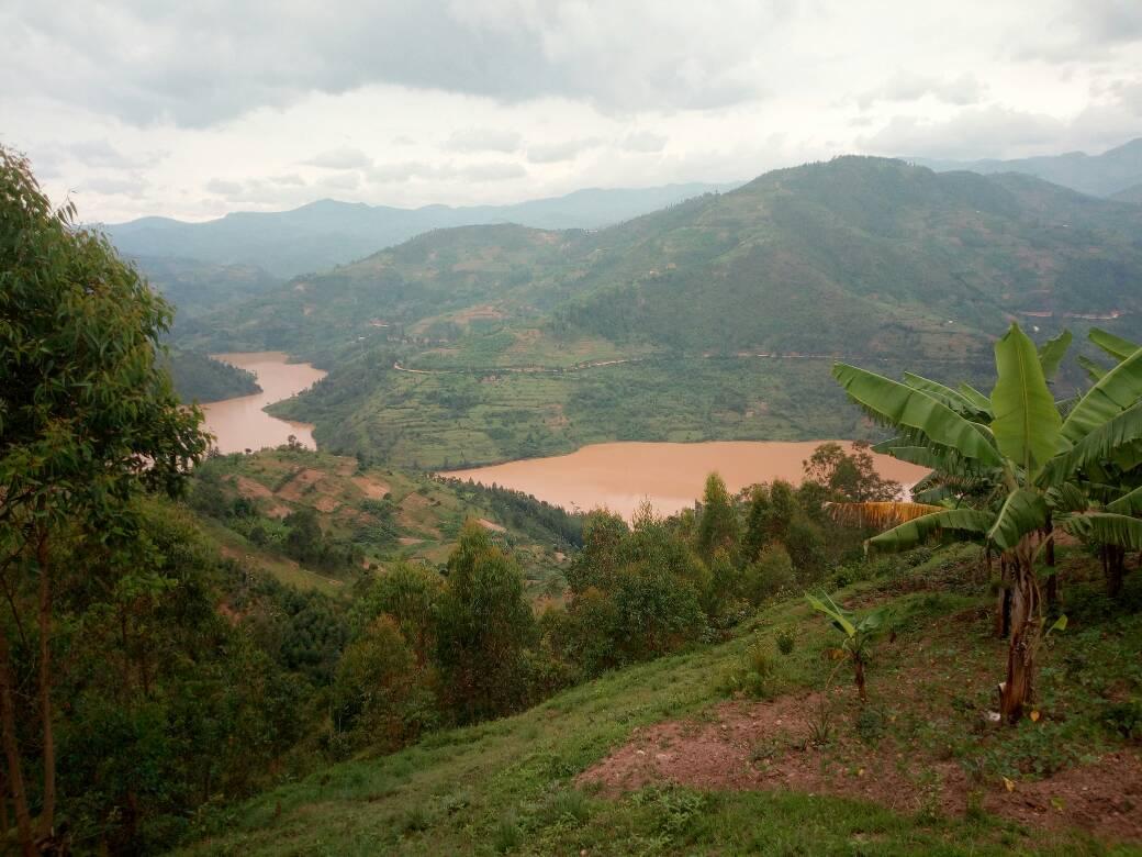 Kubera isuri Nyabarongo bayigereranya n
