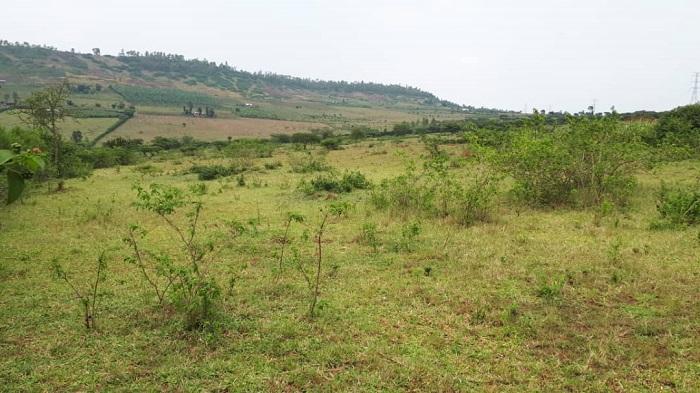 Ubutaka budafite abo bwanditseho Leta yabaye ibwisubije by
